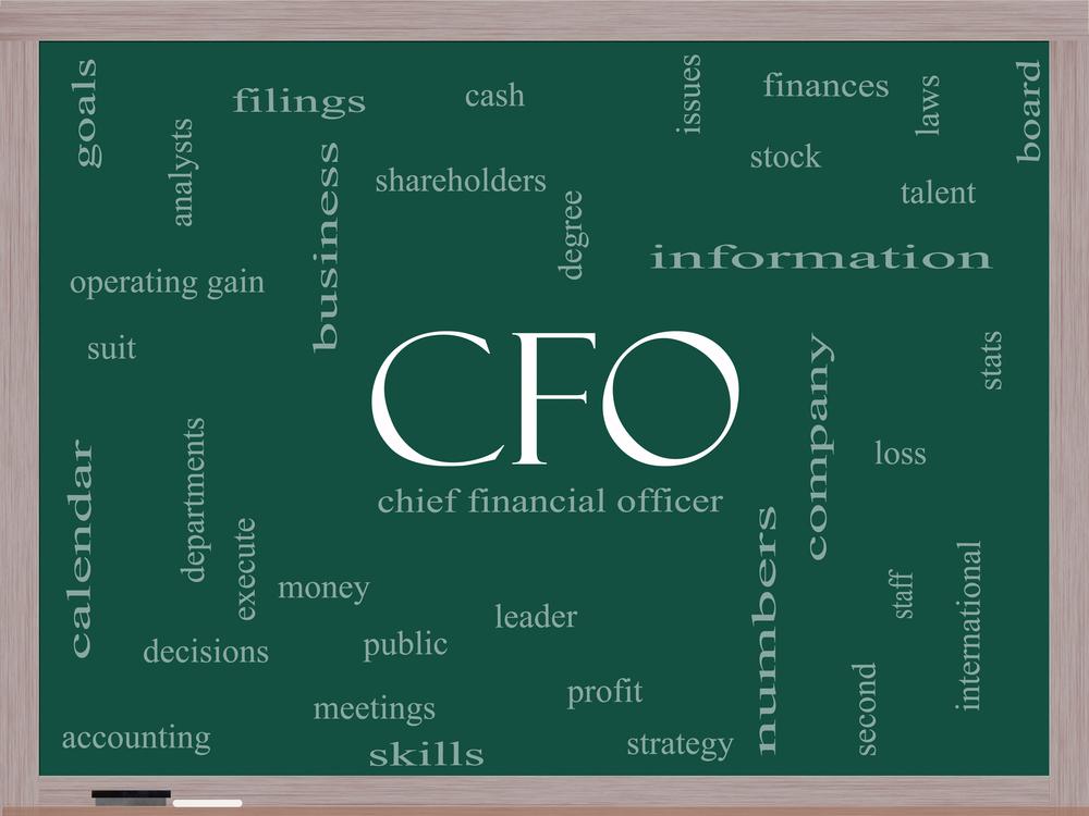 Cage match cfo versus cpa - Chief financial officer cfo ...